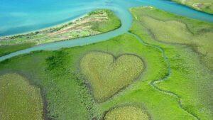 Coeur de Voh, New Caledonia