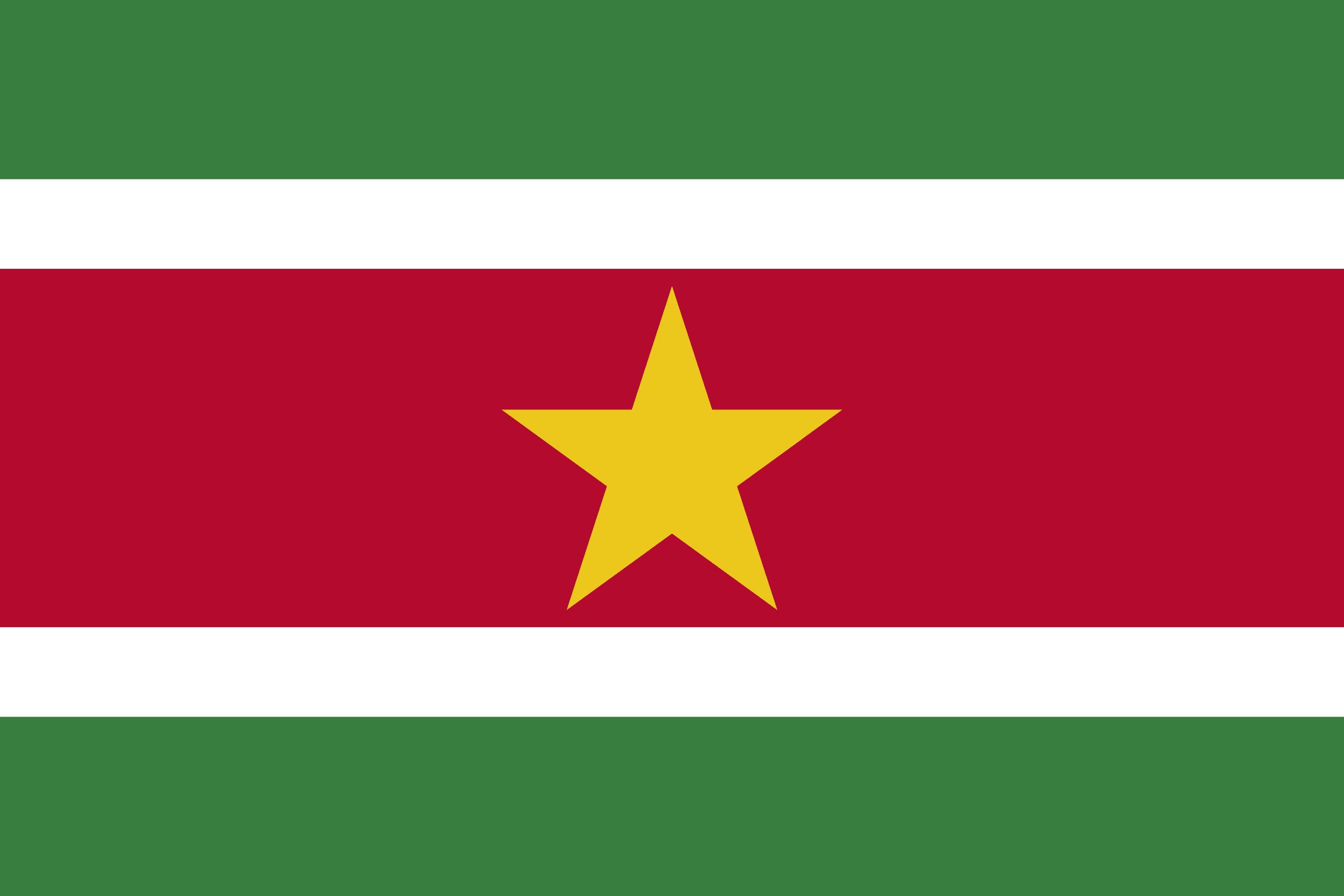 Σημαία Σουρινάμ